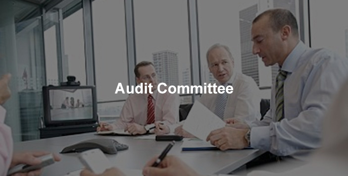 Lesso Audit committee