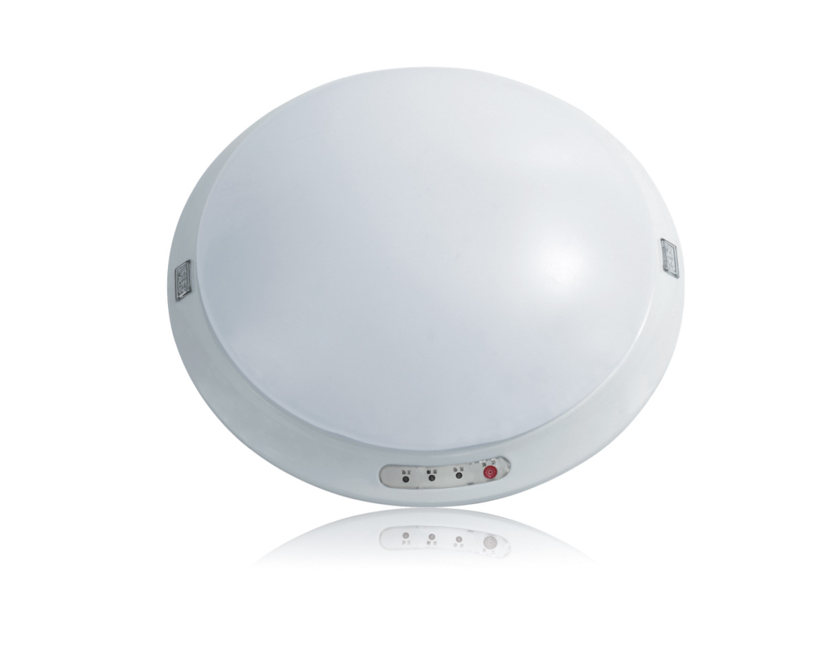 Lesso Ceiling Fire Emergency Lighting Luminaire