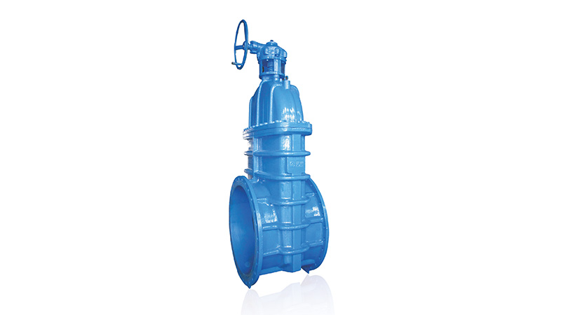 Lesso Flanged Worm Gear Gate Valve
