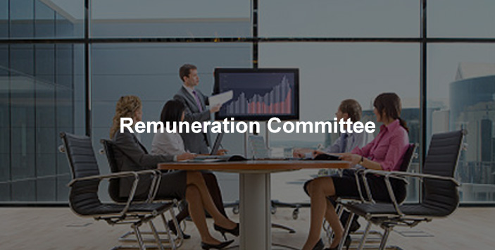 Lesso Remuneration committee